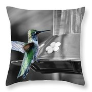 Hummingbird Wings II Throw Pillow