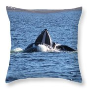 Hump Back Whale In Alaska Throw Pillow
