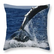 Humpback Whale Flipper Slap Hawaii Throw Pillow