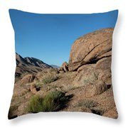 Humping Rock Throw Pillow