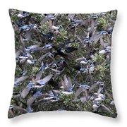 Hundreds - Tree Swallows Throw Pillow