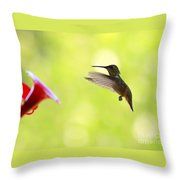 Hungry Hummer Throw Pillow