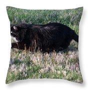 Hunter Budd Throw Pillow