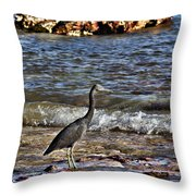 Hunting In The Shallows Throw Pillow