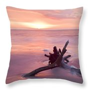 Hunting Island South Carolina Throw Pillow