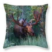 Hunting Some Munchies Throw Pillow