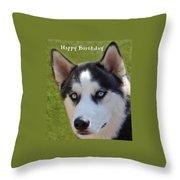 Husky Birthday  Throw Pillow by Aimee L Maher Photography and Art Visit ALMGallerydotcom