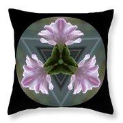 Hyacinth Kaleidoscope Throw Pillow