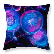 Hyalodiscus Throw Pillow