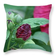 Hybiscus Bud Throw Pillow