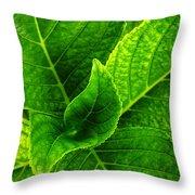 Hydrangea Leaves Throw Pillow