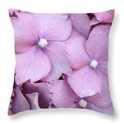 Hydrangea Macrophylla Serrata 'preziosa' Throw Pillow