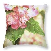 Hydrangeas Throw Pillow by Stephanie Frey