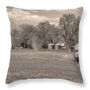 Hygiene Colorado Boulder County Scenic View Sepia Throw Pillow