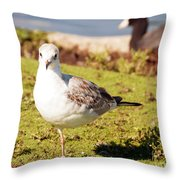 I Am Different Throw Pillow