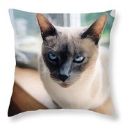 I Am Not Amused Throw Pillow