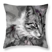 I Am Serious Throw Pillow