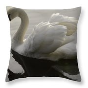 I Am Too Sexy For My Feathers Throw Pillow