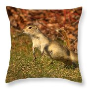 I Can Fly Throw Pillow