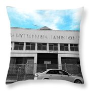 I Cannot Read Ancient Greek Throw Pillow