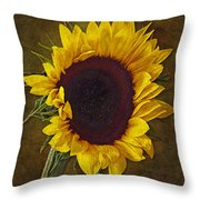 I Dance With The Sun Throw Pillow