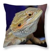 I Don't Bite Honest Throw Pillow