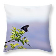 I Fly High Throw Pillow