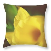 I Have Been Waiting For You Throw Pillow