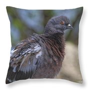 I Have The Look Throw Pillow