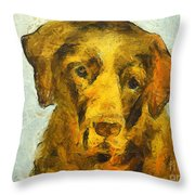 I Know I Am Old Throw Pillow