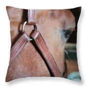 I Like Ike Throw Pillow by Laddie Halupa