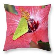 I Love My Hibiscus Throw Pillow