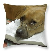 I Read My Bible Every Day Throw Pillow