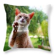 I Want Food Cat Throw Pillow