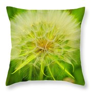 I Want To Blow Throw Pillow