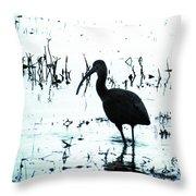Ibis By Pintail Nature Drive Cameron Prairie Nwr La Throw Pillow