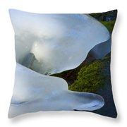 Ice 22 Throw Pillow