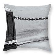 Ice Barrier Throw Pillow