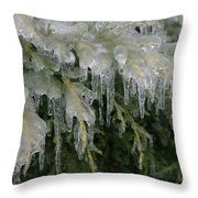 Ice-coated Arborvitae Throw Pillow