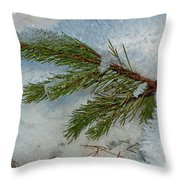 Ice Crystals And Pine Needles Throw Pillow