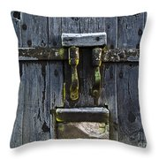 Ice Crystals On Wooden Gate Throw Pillow