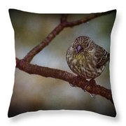 Ice Droplet Bird Throw Pillow