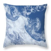 Ice Floes Along The Coastline Throw Pillow