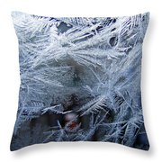 Ice Is Nice Throw Pillow