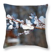 Ice On A Branch Throw Pillow