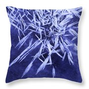 Ice Patterns On Wedge Pond Throw Pillow