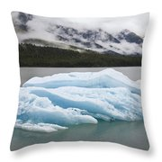 Iceberg In Endicott Arm, Inside Throw Pillow
