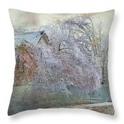 Iced In II Throw Pillow