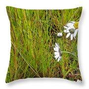 Iceland Spring Throw Pillow