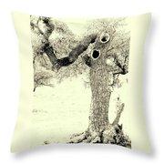 Ichabod Lane Throw Pillow
